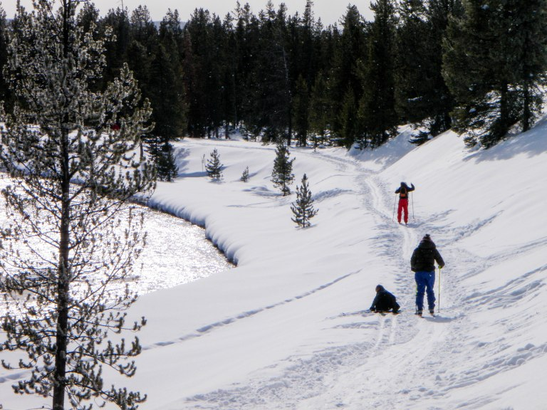 Skiing along the Madison River, Yellowstone National Park.