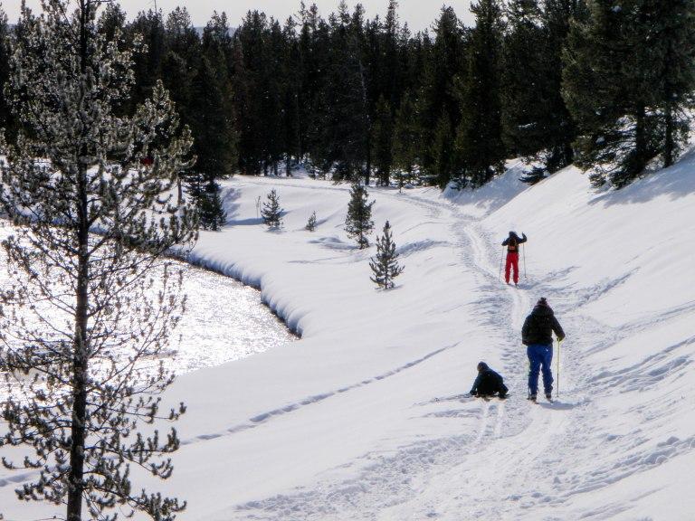 Skiing along the Madison River, Yellowstone National Park.