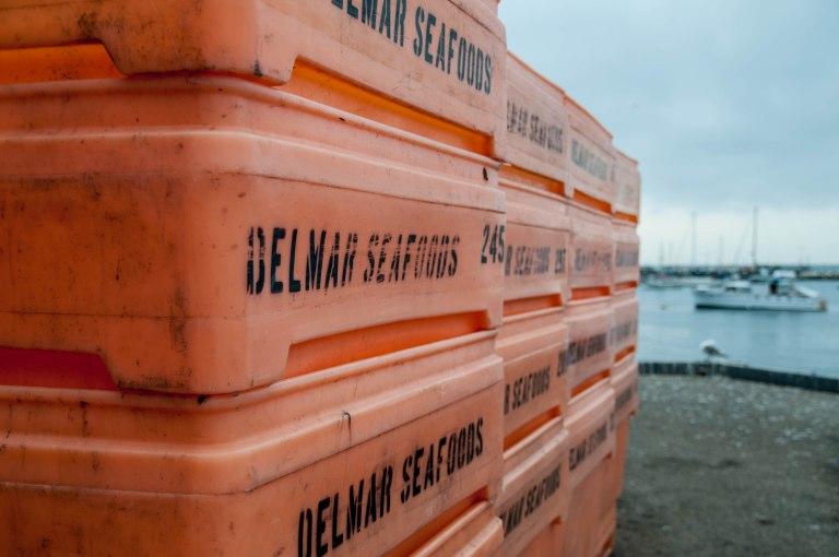 Delmar Seafoods