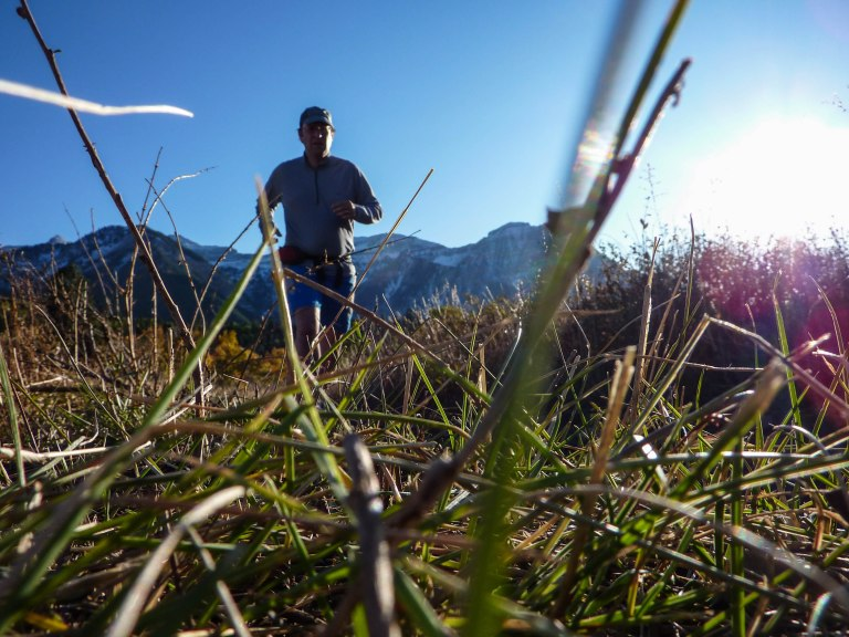Running across a high mountain meadow in the Wasatch Range