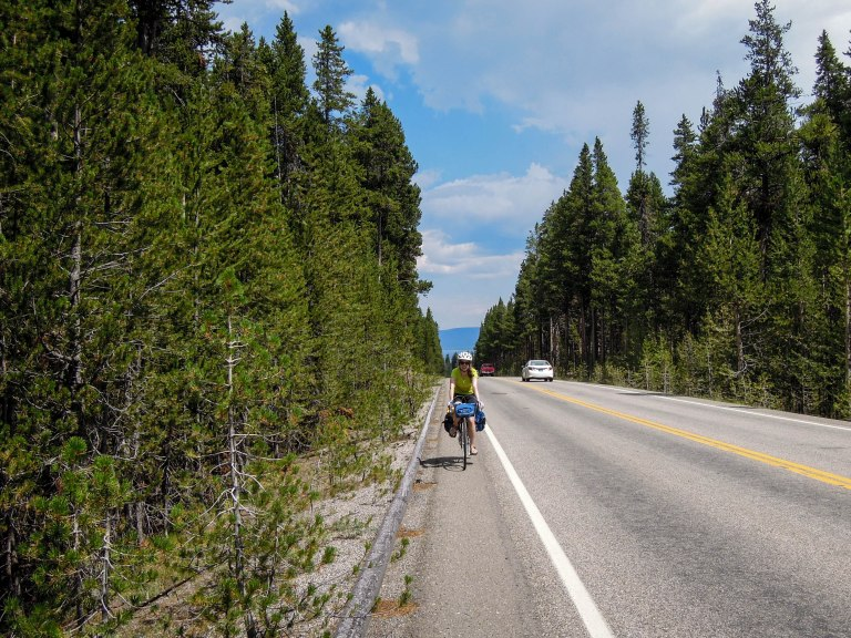 Natalie riding through beautiful lodgepole pine forests