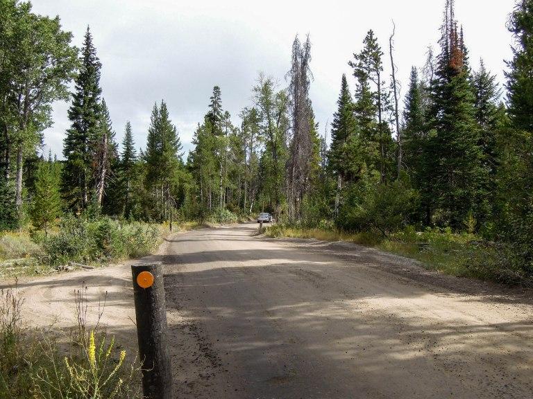 The Moose-Wilson Road