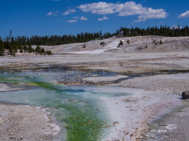 Vivid colors in the Porcelain Geyser Basin