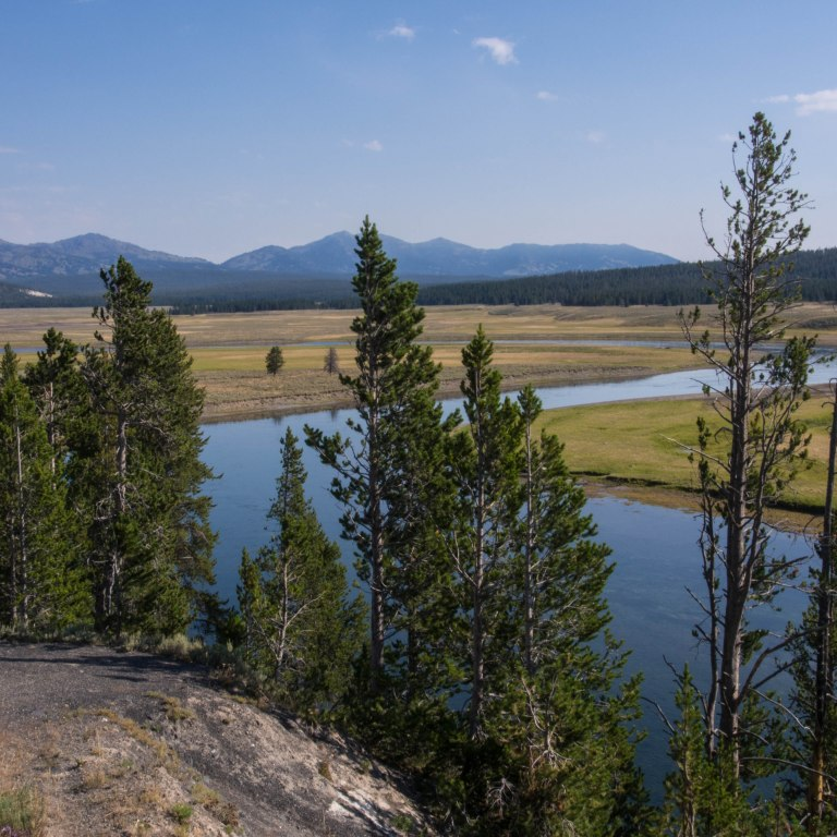 The Yellowstone River flowing through the Hayden Valley