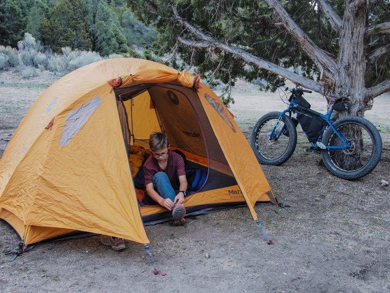 Camp under a huge juniper