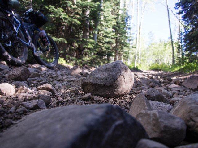 A very rocky road/trail.