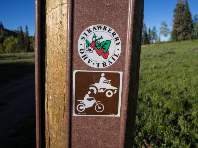 Most of the roads in this area are part of the Strawberry OHV trail system.