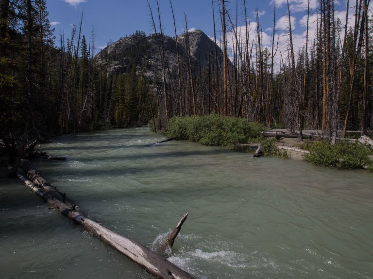 Downs Creek with milky glacial runoff.