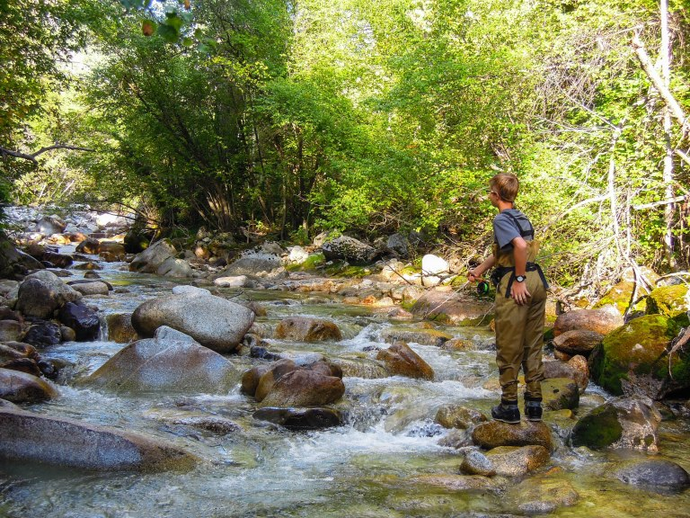 Small creek in the Wasatch Mountains.