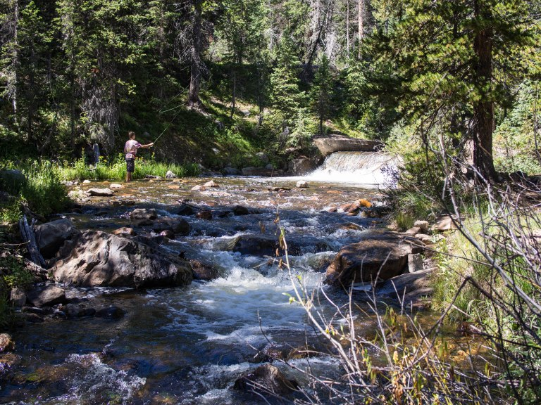 Small creek in the Uintas.