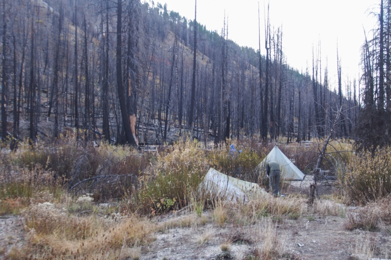 Camping in the burn area.