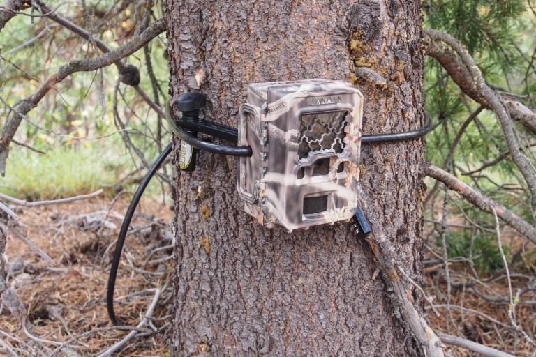 Trail camera.