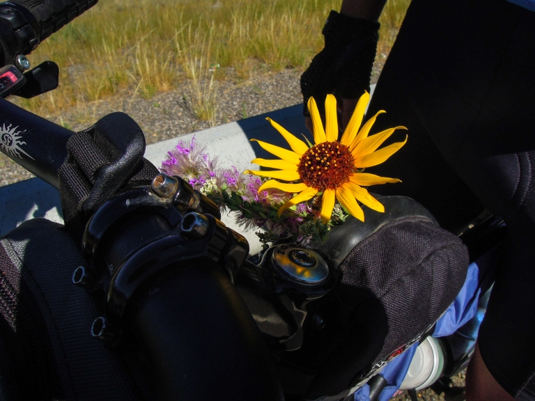 Lars collected wildflowers along the way.